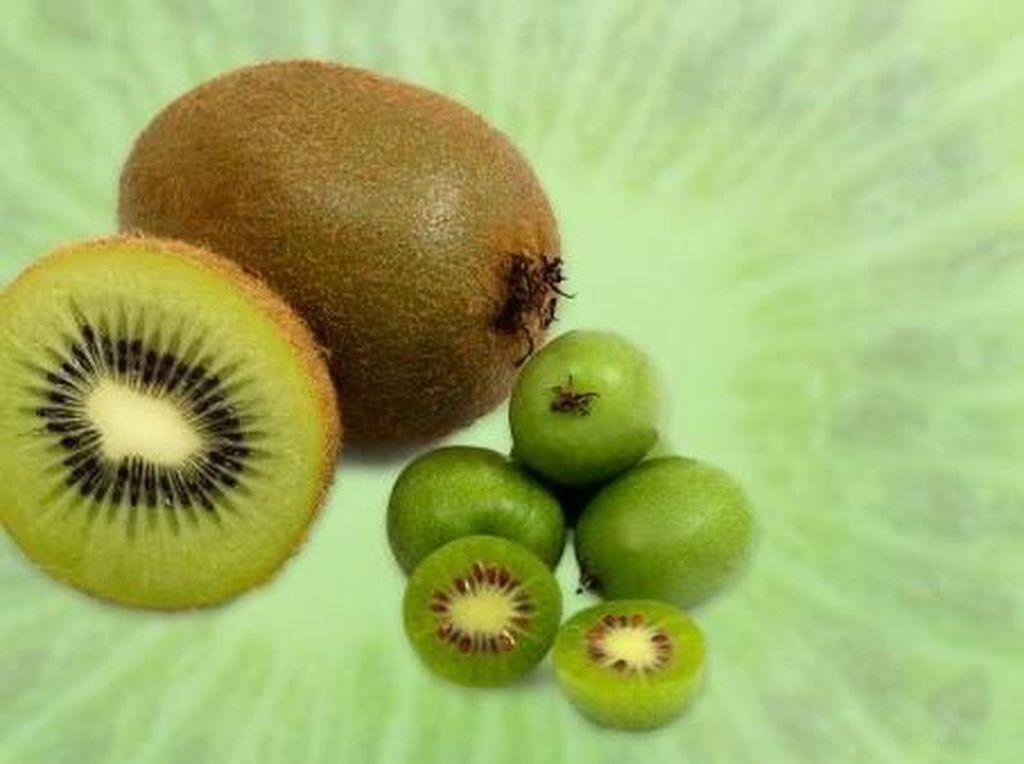 Buah Baby Kiwi yang Mungil Ini Siap Jadi Tren Buah