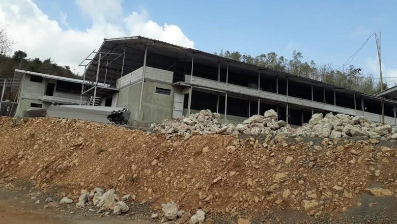 Pembangunan peternakan Ayam di Geopark Gunung Sewu (Istimewa/Cahyo)