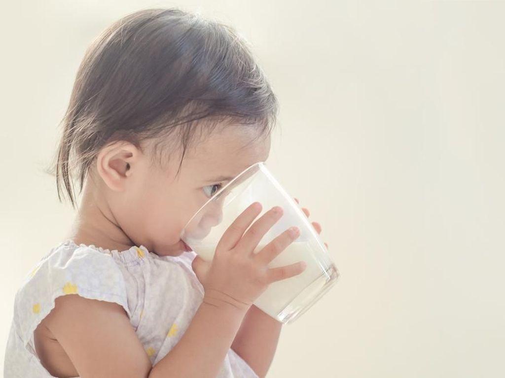 Menyikapi Anak Ogah Makan dan Cuma Mau Minum Susu