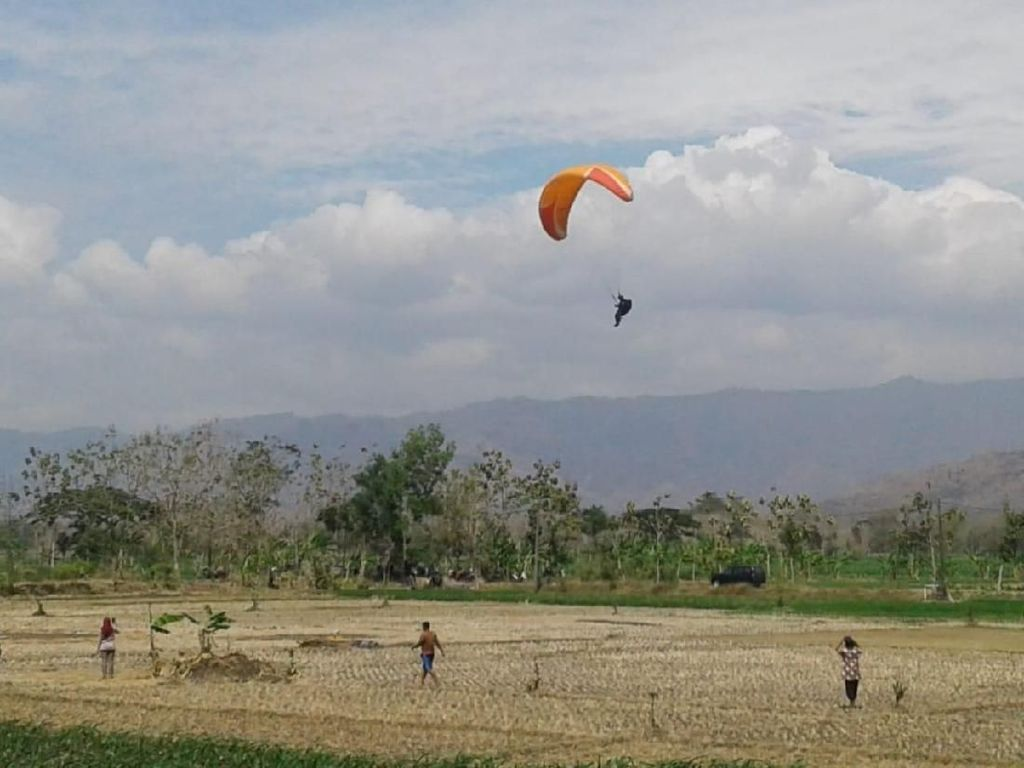 Selain Wisata Baru, Dana Desa di Tatung Hasilkan Atlet Paralayang