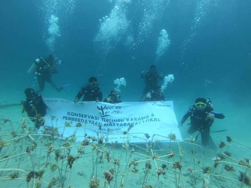 Tour de Terumbu, Upaya Pertamina Lestarikan Terumbu Karang Indonesia