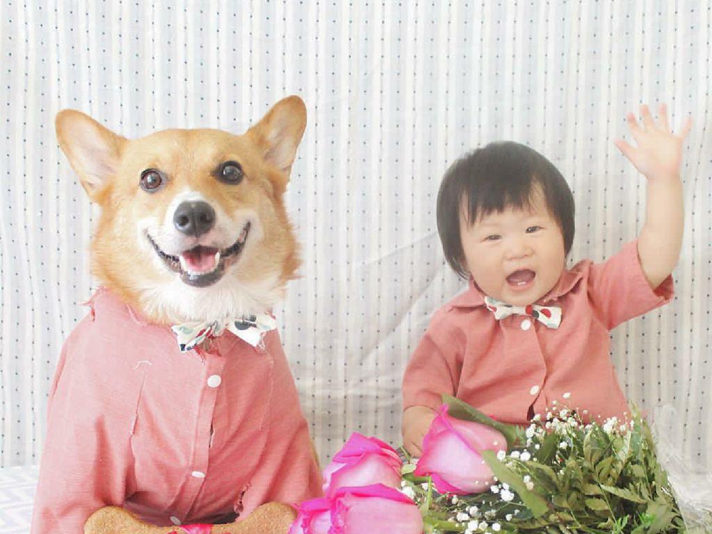 Tingkah Menggemaskan si Kecil dengan Anjing Peliharaannya