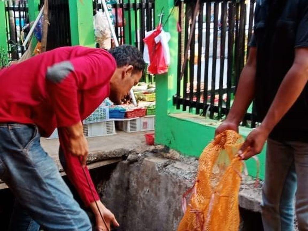 Rusak Pembatas Jalan di Pd Labu, Pria ini Dihukum Bersihkan Got