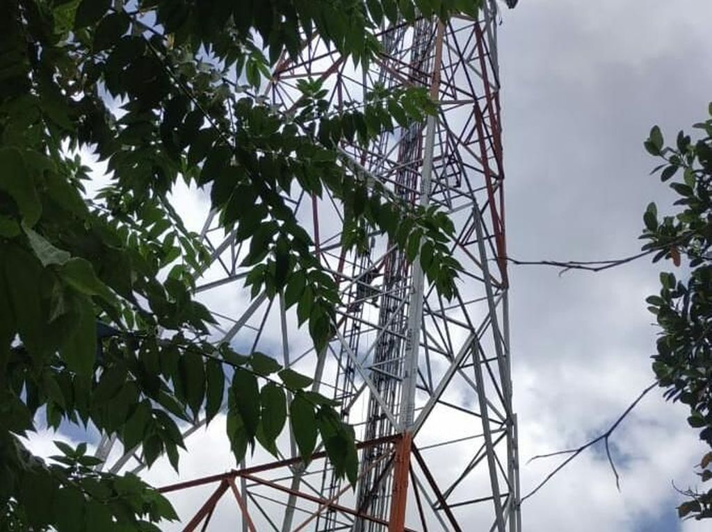 Depresi Ditinggal Mati Ibu, Remaja di Tulungagung Panjat Tower