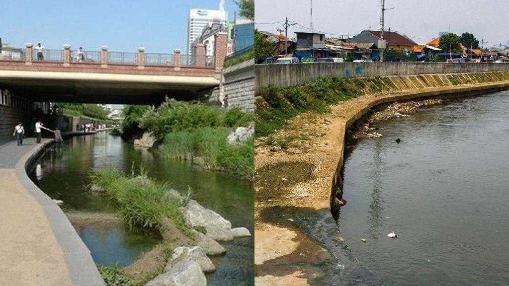 Begini Perbedaan Sungai Cheonggyecheon dan Sungai Ciliwung