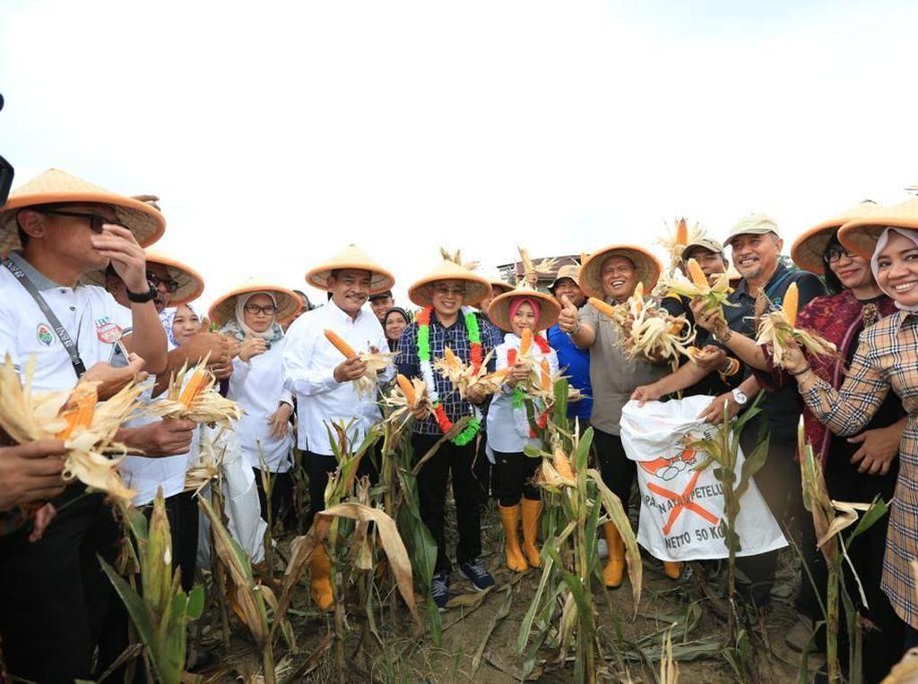 Kemendes PDTT Dukung Bengkulu Selatan Kembangkan Prukades Jagung