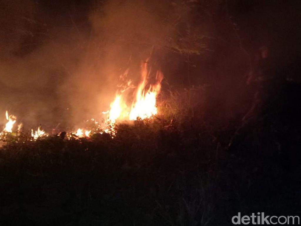 Kebakaran Terjadi di Hutan Jati Cilacap