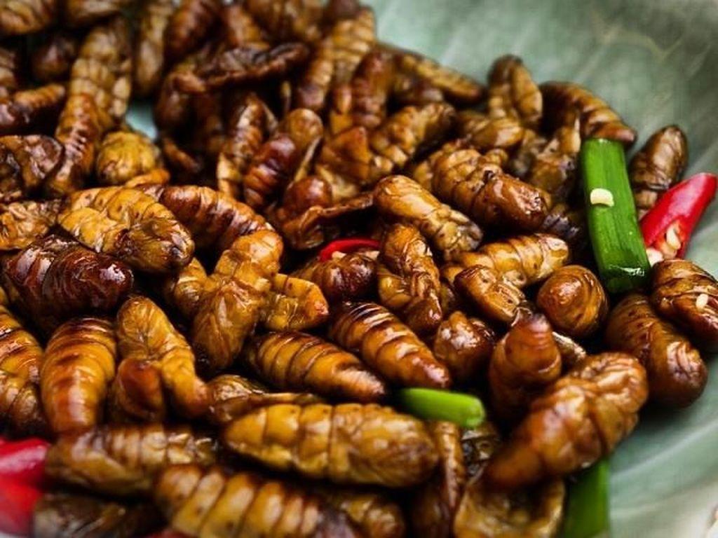 10 Makanan Ini Dianggap Menjijikkan Tapi Digemari Banyak Orang