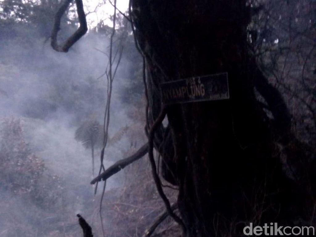 50 Orang dari Tim Gabungan Menuju Titik Kebakaran Gunung Slamet