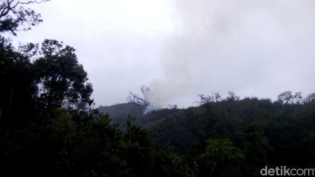 Ini Dia Lokasi Titik Api Kebakaran di Hutan Gunung Slamet