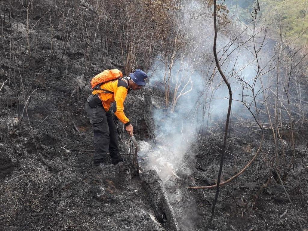 Aparat Gabungan Selidiki Penyebab Kebakaran Gunung Ciremai
