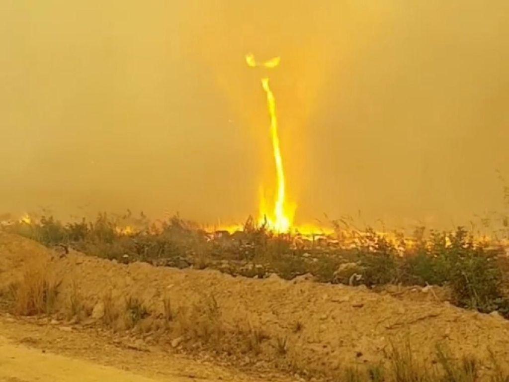 Ngeri! Ada Tornado Api di Kebakaran Lahan Kanada