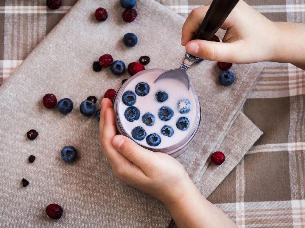 Hasil Penelitian Ungkap Jika Yogurt Bisa Jadi Pemicu Obesitas