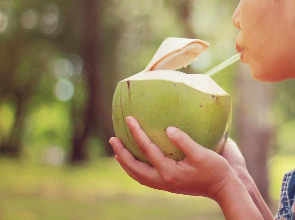 Air Kelapa Bisa Sembuhkan Penyakit, Mitos atau Fakta?