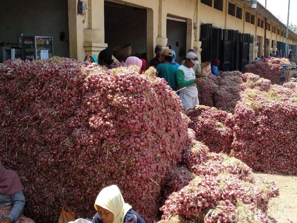 Harga Bawang Merah Merosot, Ini yang Dilakukan Petani di Probolinggo