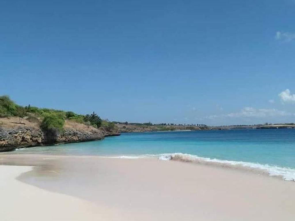 Potret Pantai Pink yang Menggoda di Lombok Timur