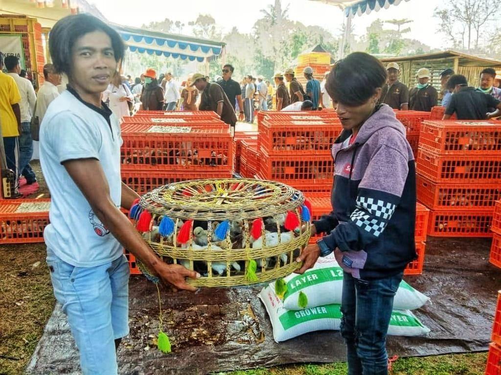 Beri Bantuan Ternak, Jurus Kementan Tekan Kemiskinan