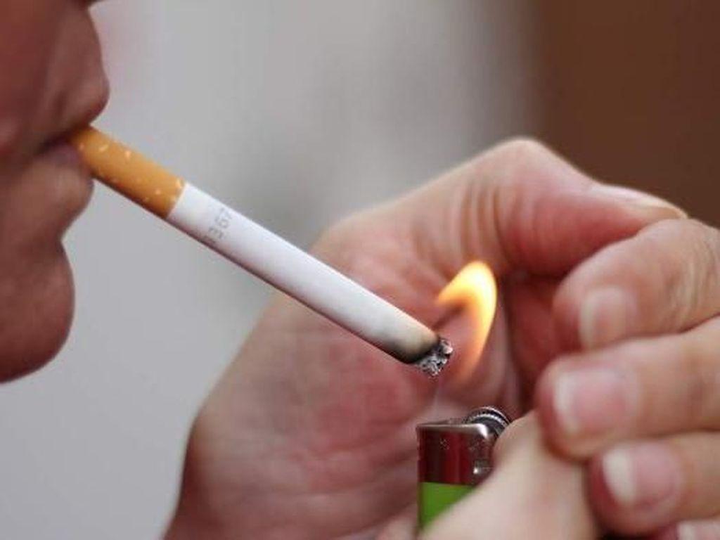 Cukai Rokok Batal Naik, Pemerintah Takut Pabrik Tutup