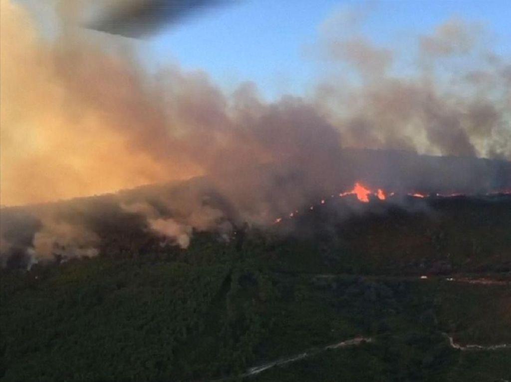 Kebakaran Hutan di Sisilia Meluas ke Permukiman, Warga Dievakuasi