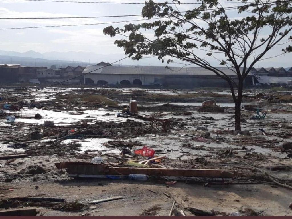 Dampak Tsunami di Palu, Ini Tandanya Korban Mengalami Fobia Air
