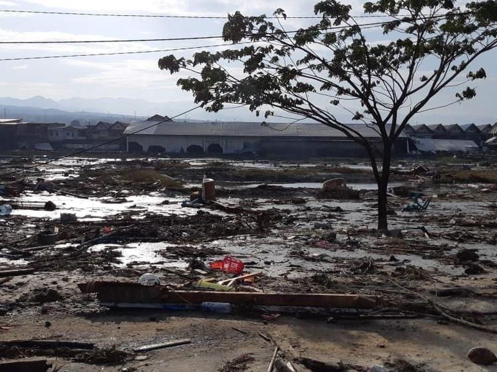 Penampakan Terkini Kerusakan di Pantai Kota Palu Pascatsunami