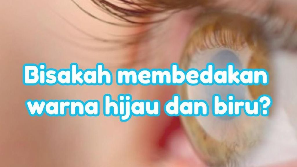 Tes Mata, Setajam Apa Mata Kamu Membedakan Hijau dan Biru?