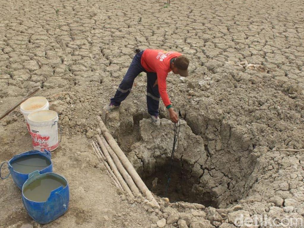 Kekeringan, Warga di Blora Gali Dasar Embung untuk Dapatkan Air