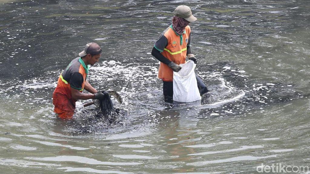 Aksi Bersih-bersih Kanal Banjir Timur