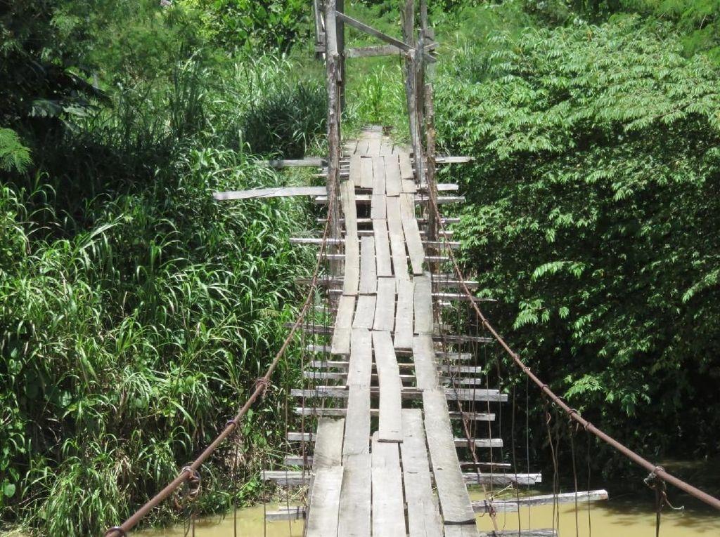 Cerita Jembatan Indiana Jones Putus Hati di Perbatasan Papua