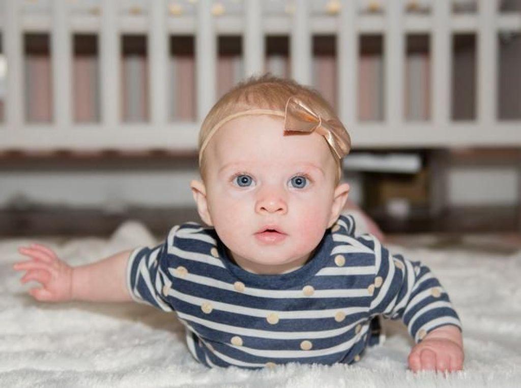 10 Makanan untuk Meningkatkan Kekuatan Otak Bayi