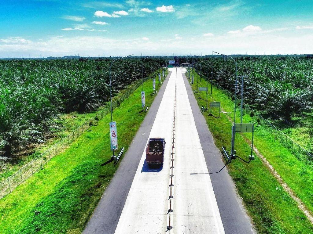 Penampakan Tol Medan-Binjai Tembus Belantara Hutan Sawit