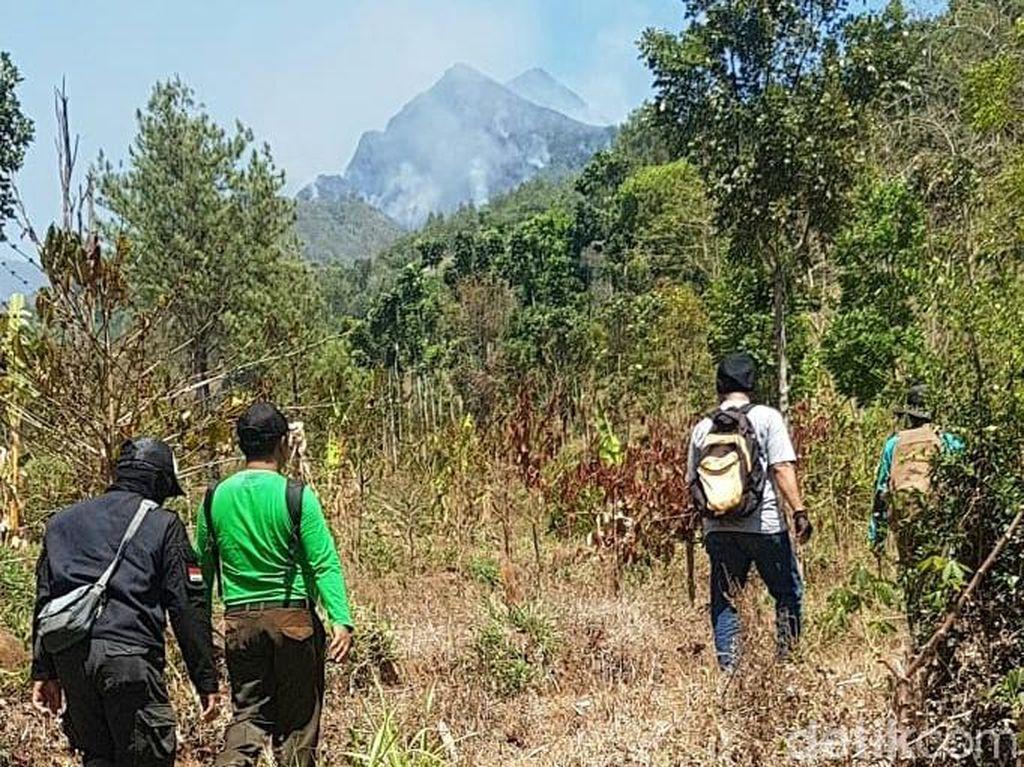 Kebakaran Lereng Argopuro Akhirnya Padam, 13 Hektar Hutan Terbakar