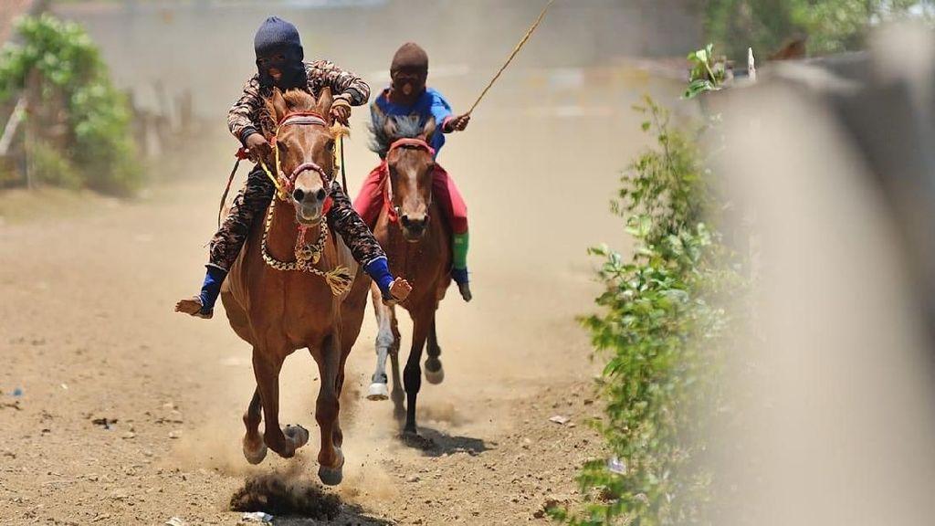 Melihat Lincahnya Para Joki Cilik di Pacuan Kuda Bima