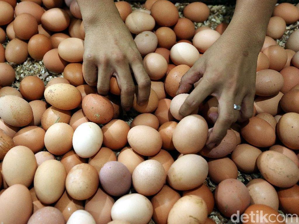Telur Ayam hingga Bawang Merah Diramal Sumbang Inflasi Januari