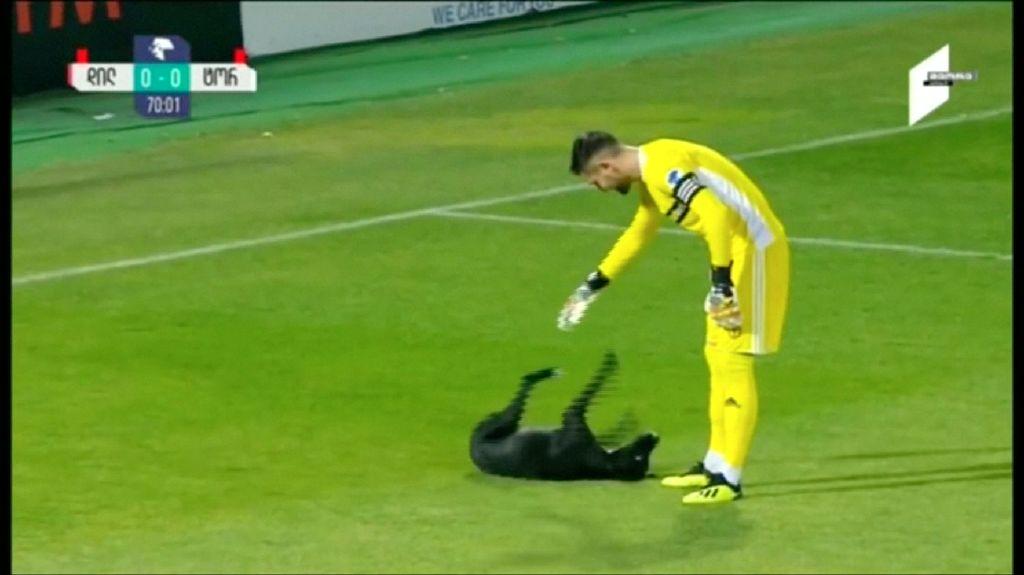 Gara-gara Anjing, Pemain Lupa Main Bola