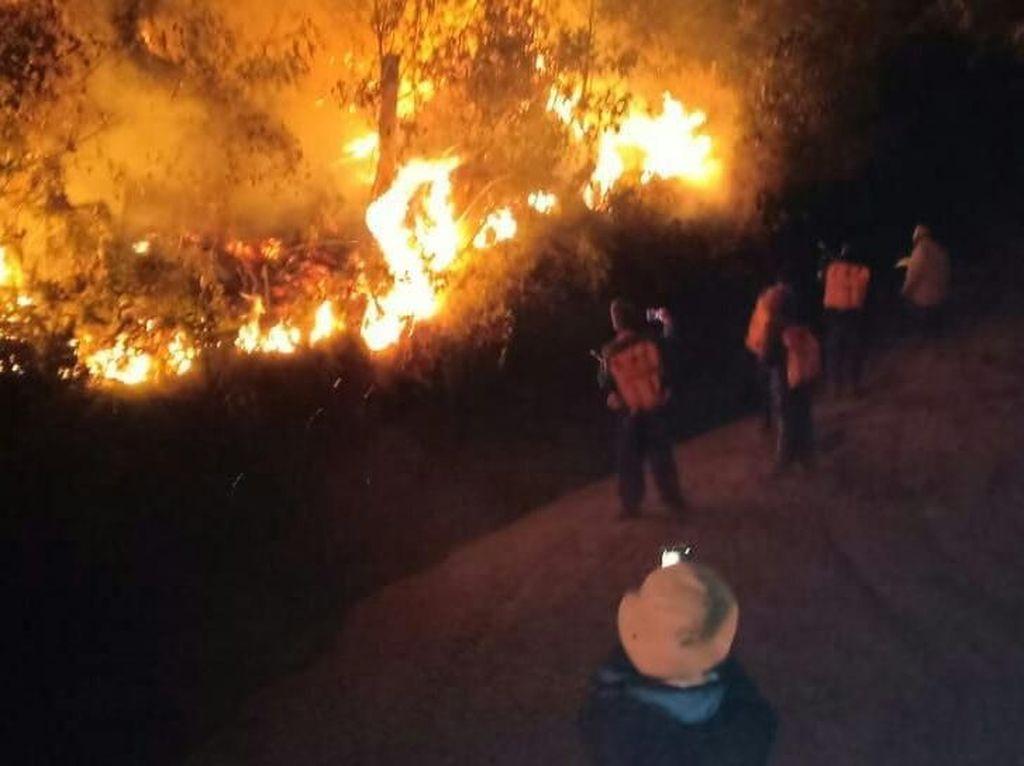 50 Hektar Lahan di Lereng Gunung Ijen Terbakar