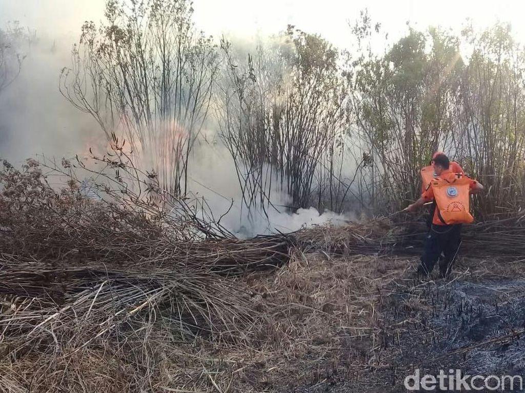Kebakaran Lereng Gunung Ijen Padam, Tak Ganggu Wisatawan