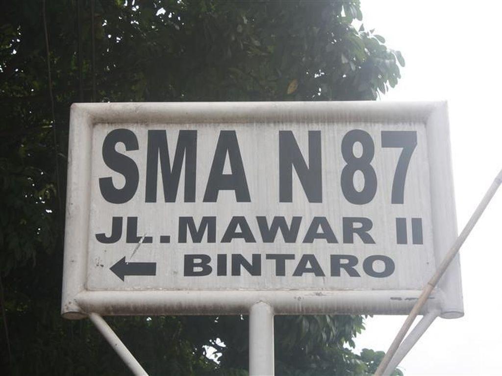 Nelty Khairiyah Dipanggil Disdik DKI soal Aduan Doktrin Anti-Jokowi