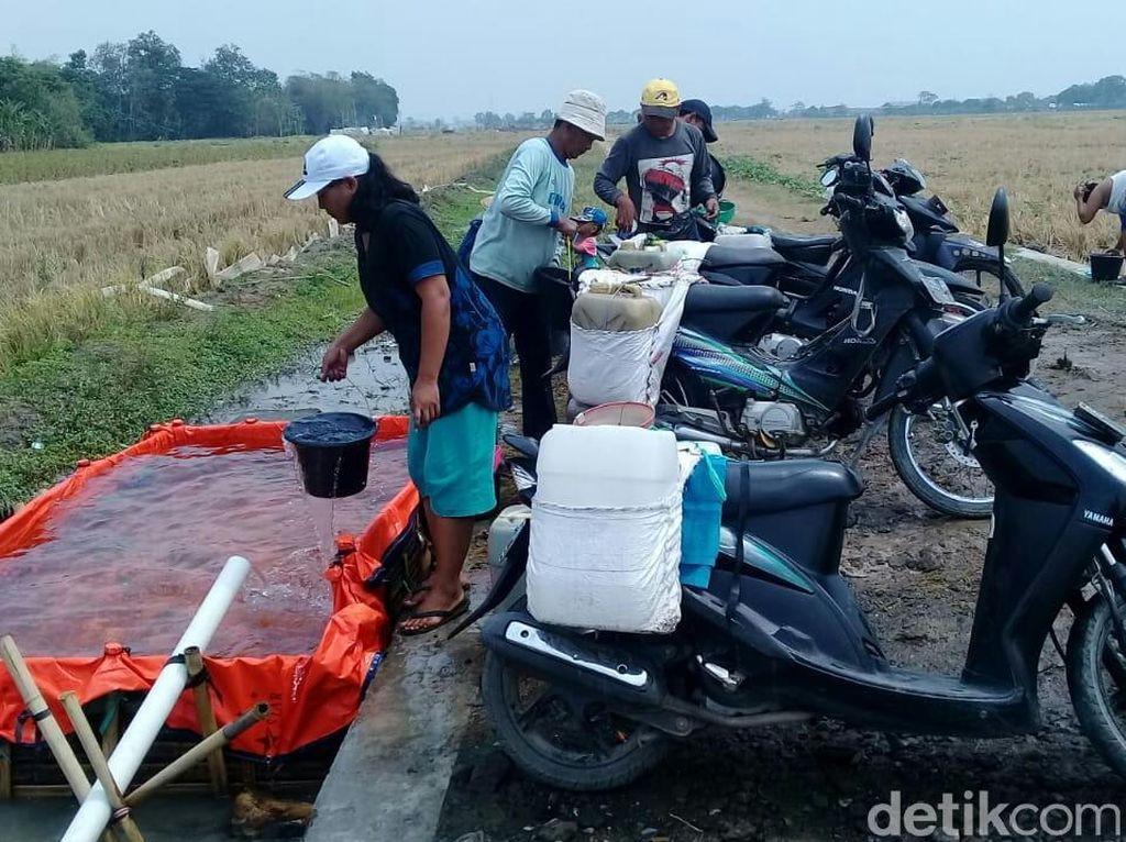 Cerita Warga Slangit Cirebon Tempuh 2 KM Akses Air Bersih