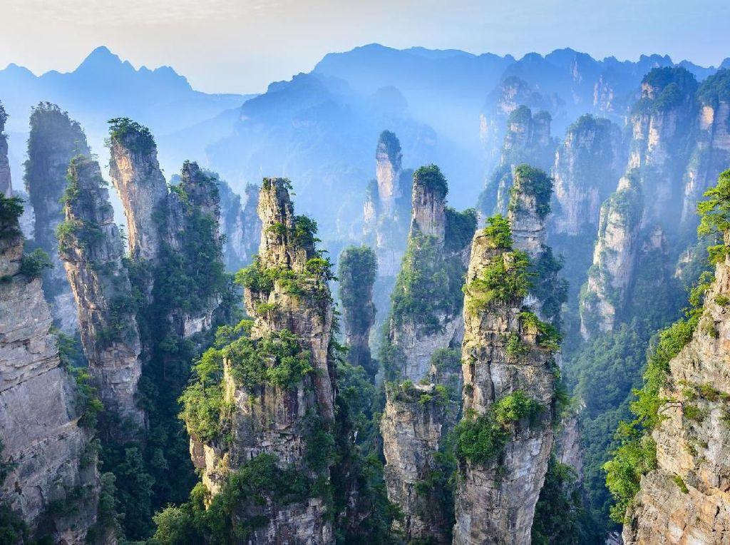 Wisata Gunung Avatar Di China