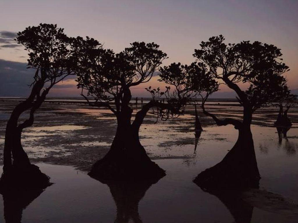 Cantiknya Suasana Sunset di Pantai Walakiri, Sumba Timur