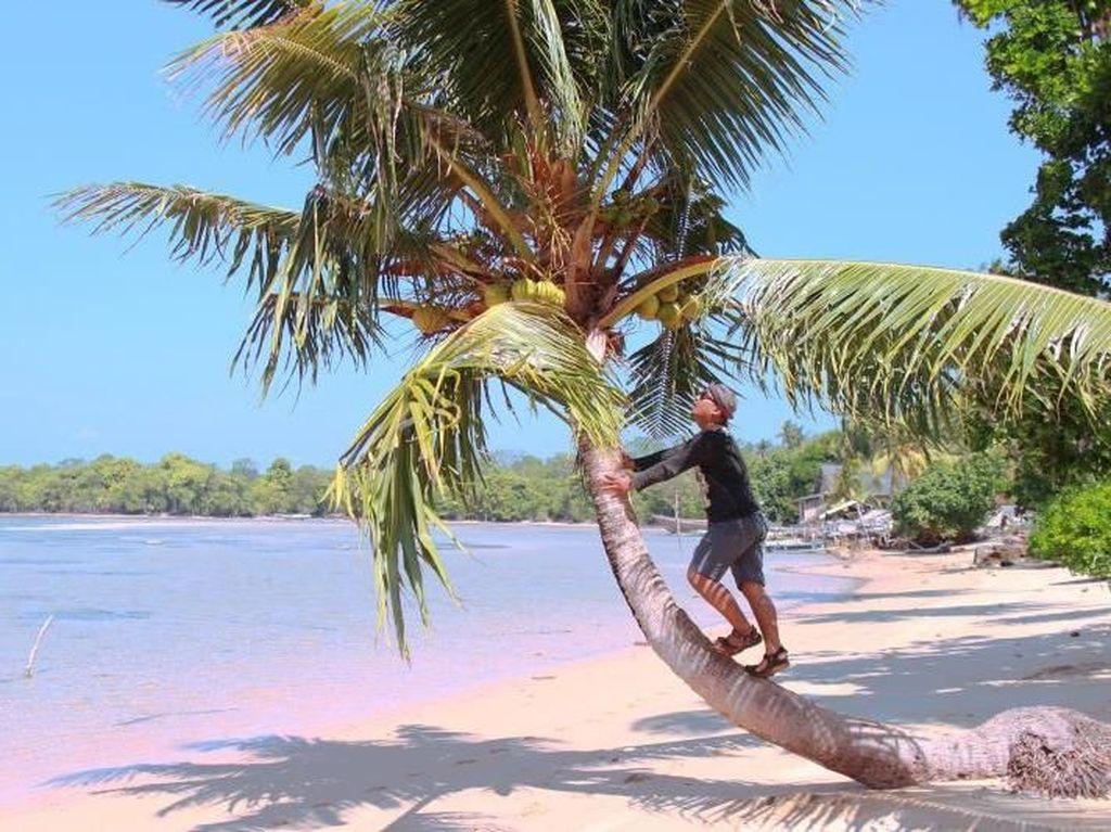 Tersembunyi, Inilah Pantai Bunga Jabe di Karimunjawa