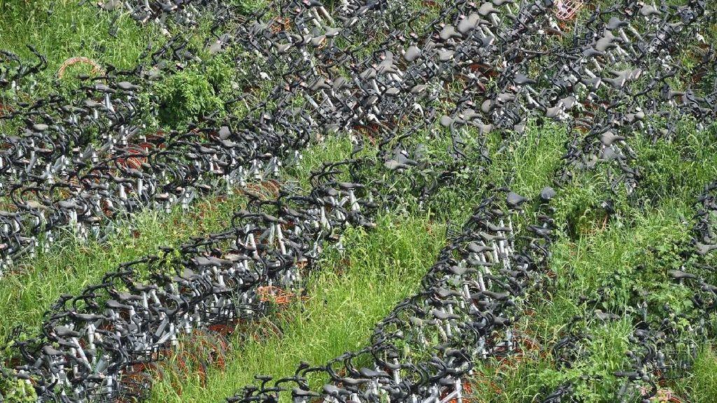 Kuburan Jutaan Sepeda, Masih Bagus Tapi Dibuang