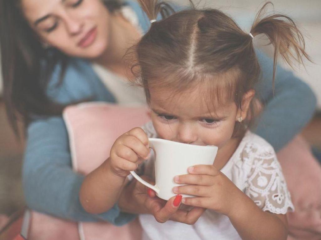 Manfaat Minum Teh untuk Anak, Bunda Wajib Tahu