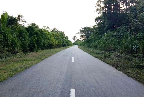 Total jalan Trans Papua Provinsi Papua Barat yang dibangun pada periode 2015-2018 sepanjang 153,62 km. Istimewa/Kementerian PUPR.