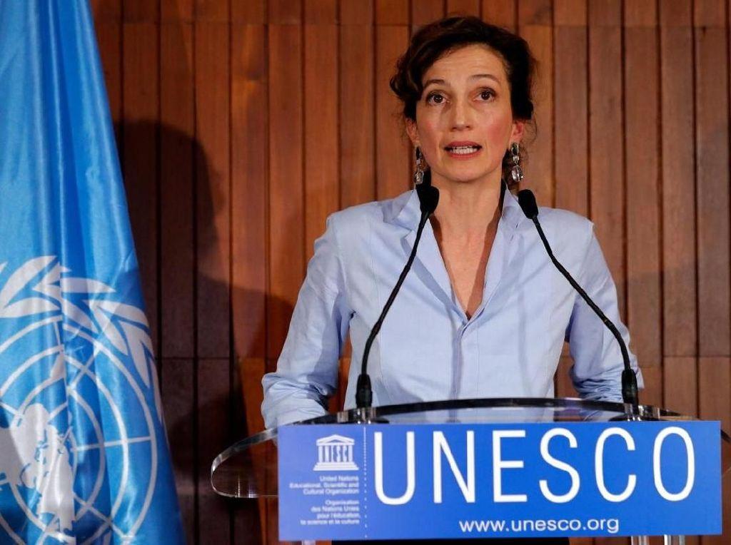 Pesan Dirjen UNESCO di Hari Toleransi Internasional