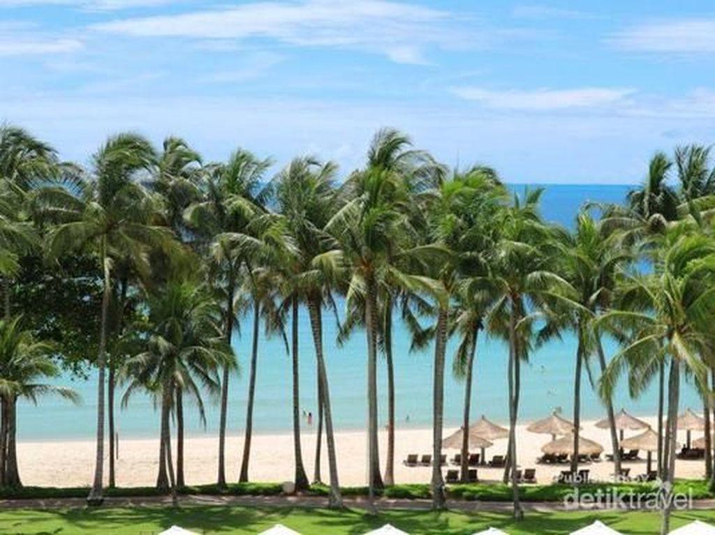 Melihat Pohon Kelapa Menari di Pantai Kepri