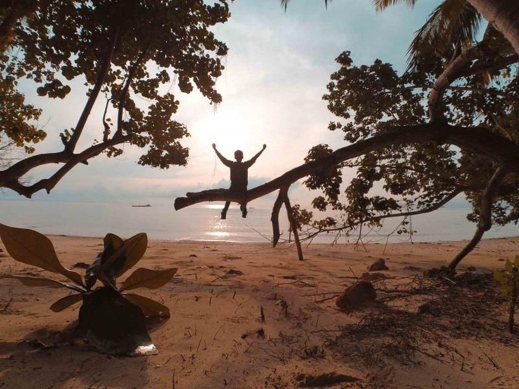 Celebrity on Vacation: Keliling Hutan Mangrove Pahawang di Lampung