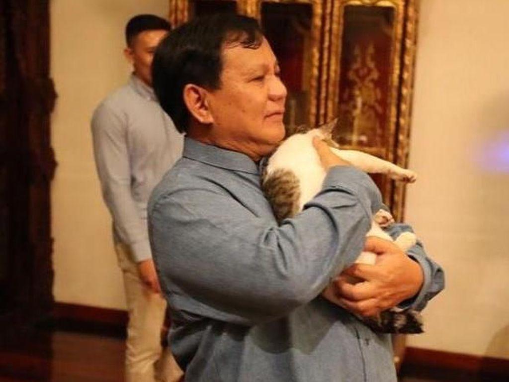 Prabowo Kenalkan Kucing Mika-Miki-Miko, New Member Selain Bobby The Cat