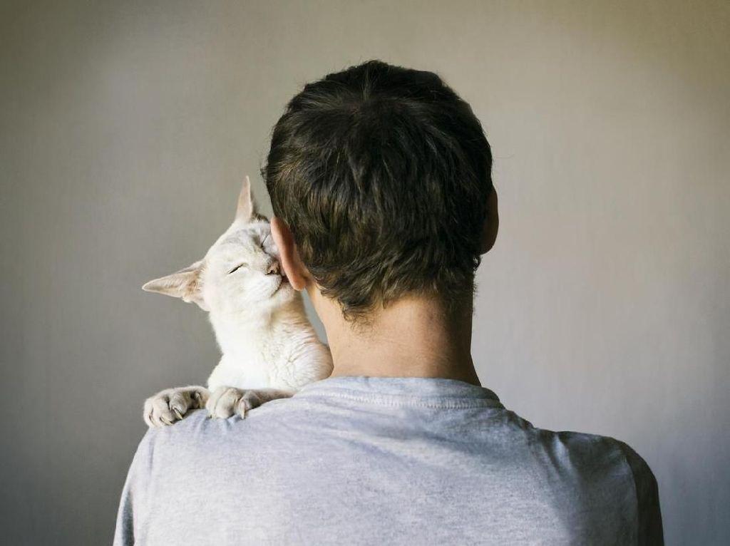 Masalah Kejiwaan di Balik Fenomena Pria Makan Kucing